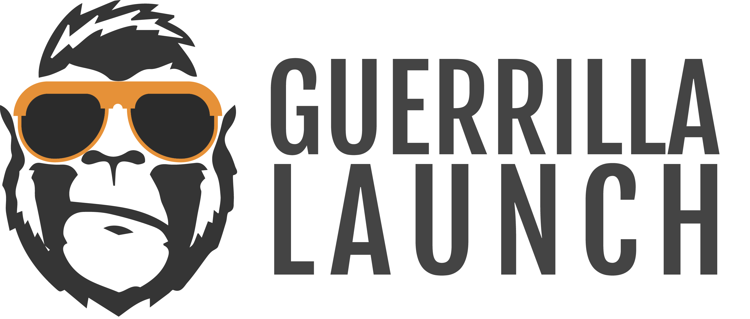Guerilla Launch Program